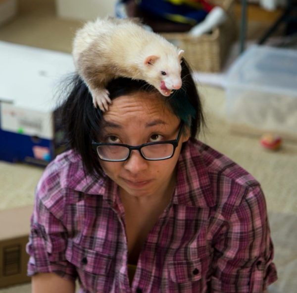 Image description: Jo sitting, looking up to where a tan ferret is perched on her head, licking its lips. Source: Jo Lau