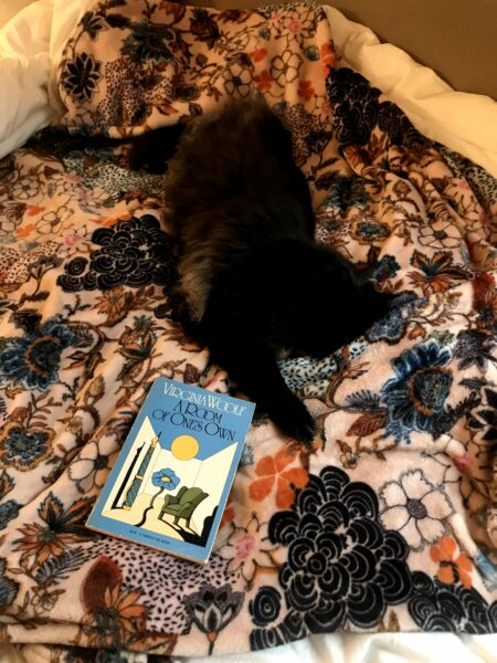 A huge fluffy black cat is spread out and sleeping on a pink floral blanket. Next to him is a copy of Virginia Woolf's A Room of One's Own.